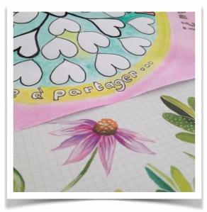 manadal-gratitude-mars17-couleurs