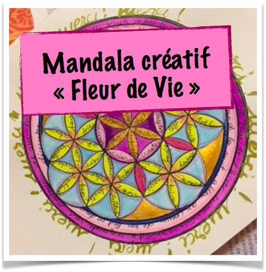 Mandala Creatif De Decembre 2017 La Fleur De Vie Atelier Les Couleurs De La Vie